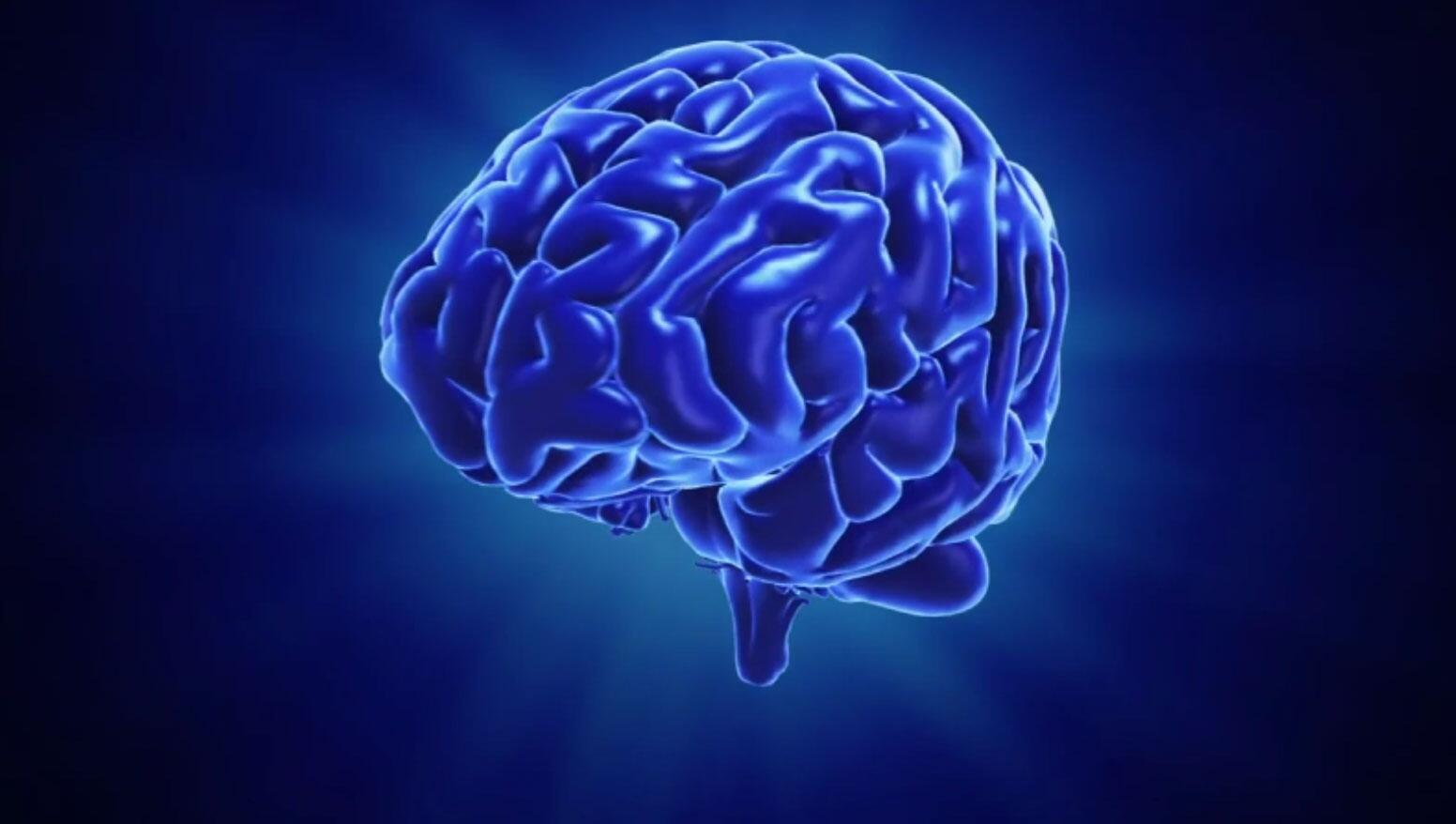 Bild zu Testen Sie Ihr Gehirn