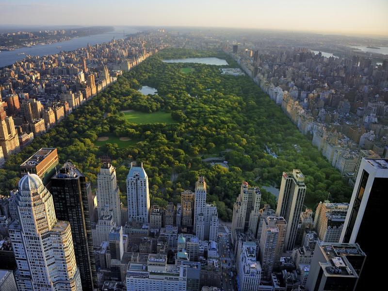 Bild zu Central Park in New York