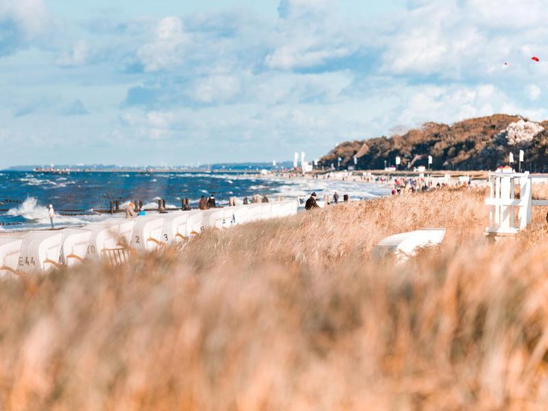 Bild zu Malen an der Ostsee