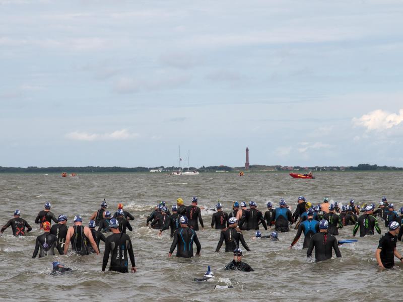 Bild zu Schwimmer in der Nordsee