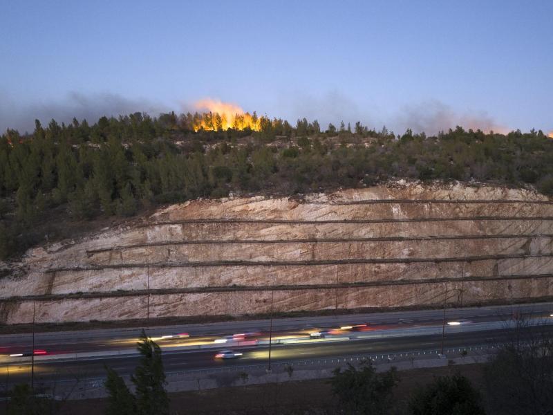 Bild zu Brand im Wald vor Autobahn