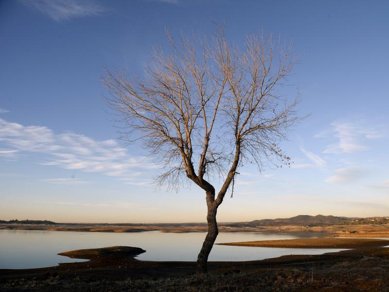 Bild zu Dürre in Kalifornien