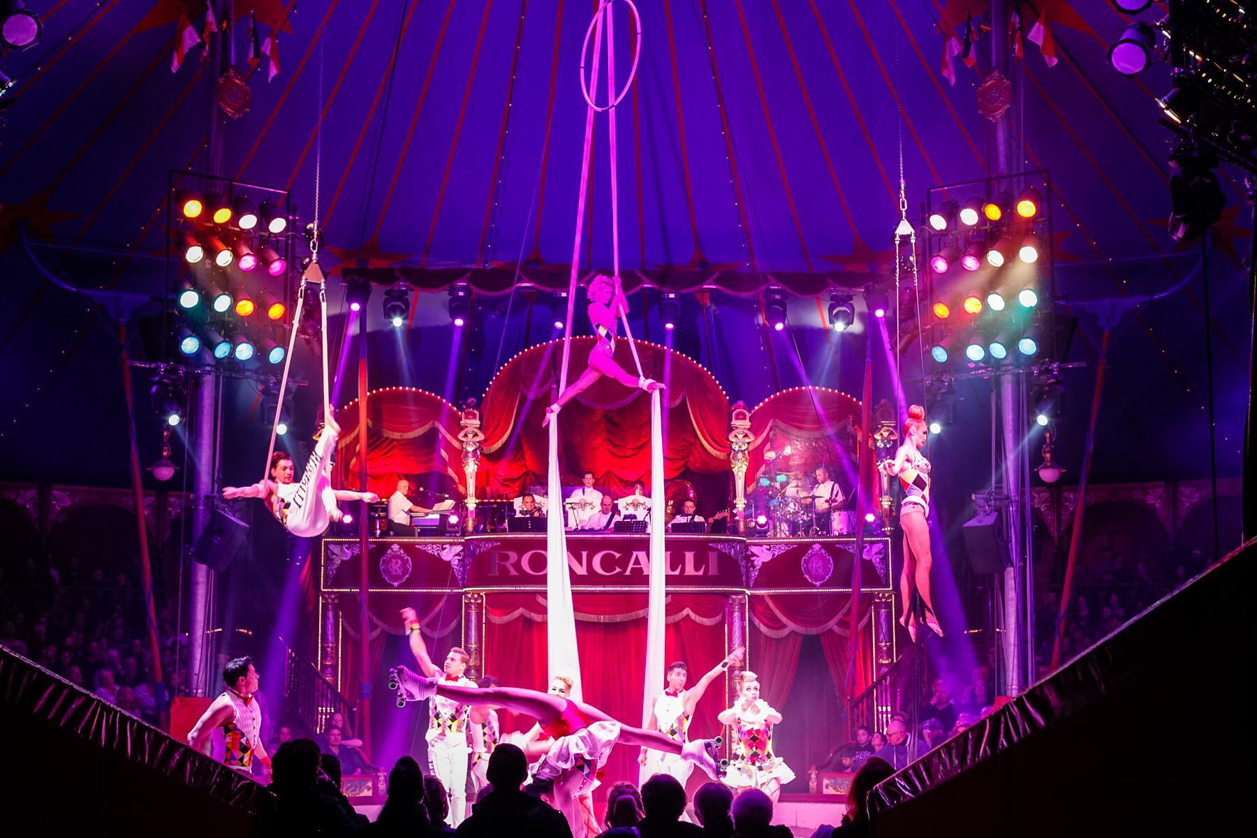 Bild zu Zirkus