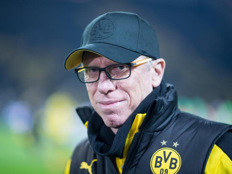 Bild zu BVB-Trainer