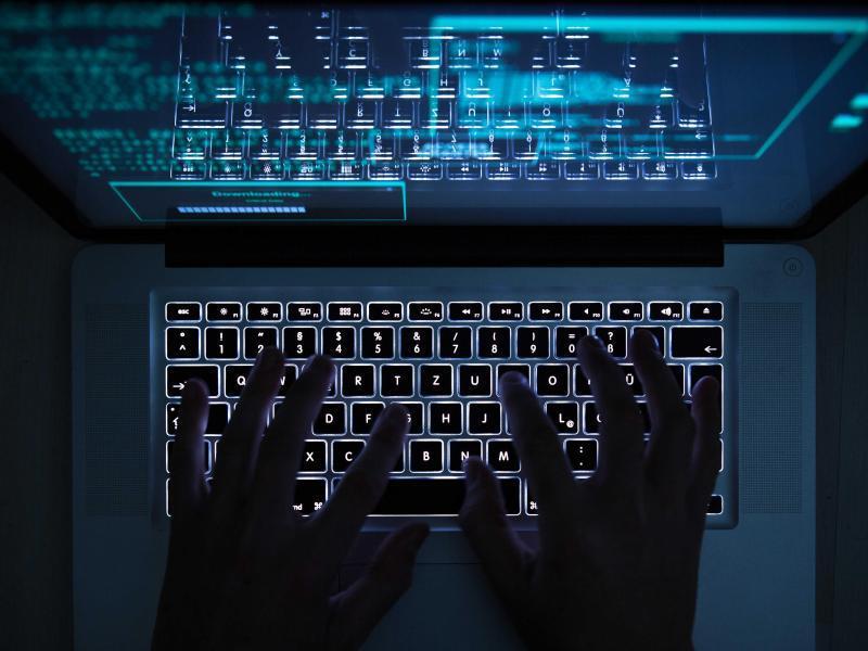 Bild zu Hände und Computer