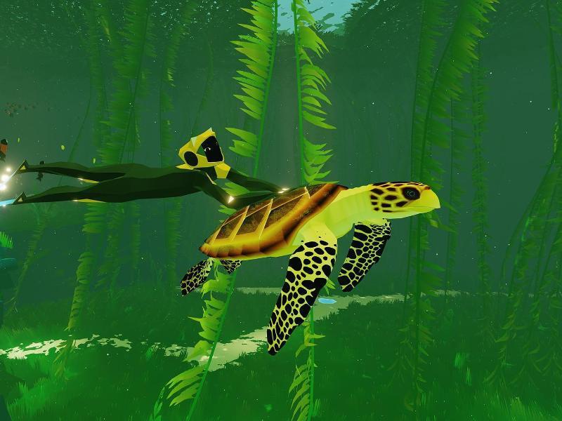 Bild zu Taucherin aus «Azubu» mit Schildkröte