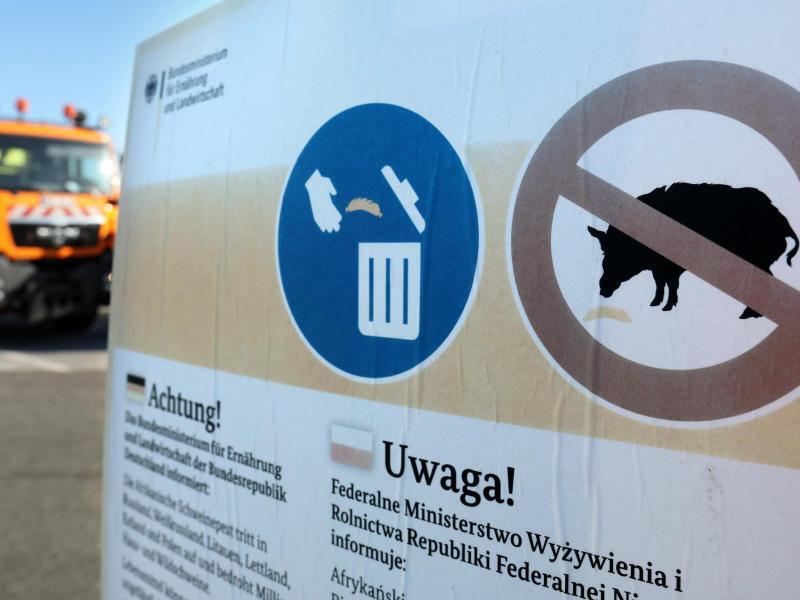 Bild zu Hinweisschild Schweinepest