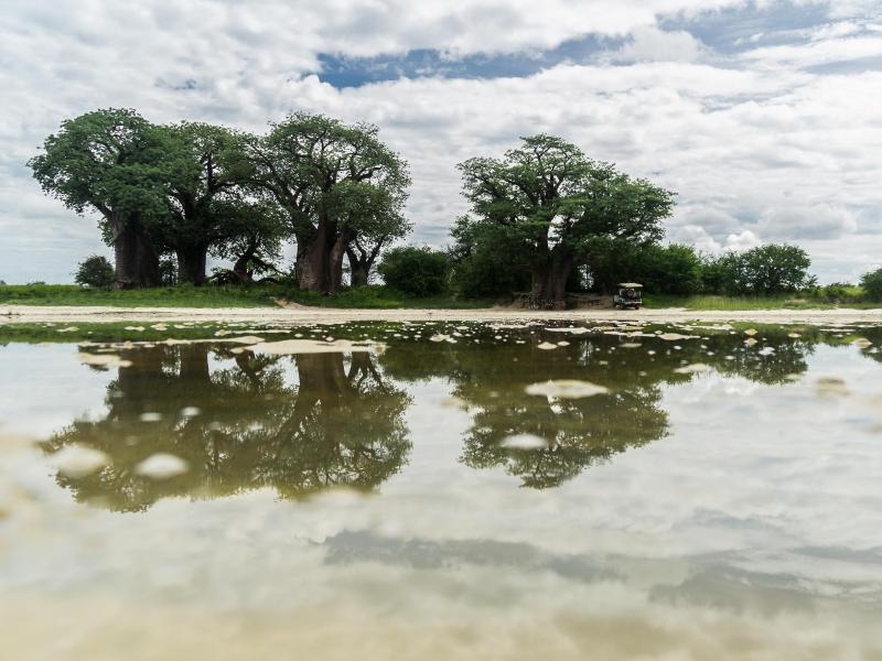 Bild zu Überschwemmte Salzpfanne