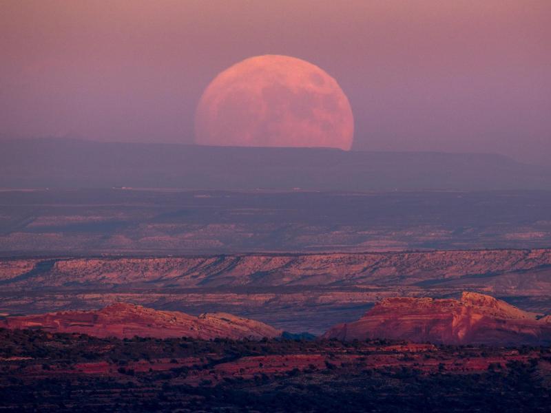 Bild zu Valley of the Gods, Utah