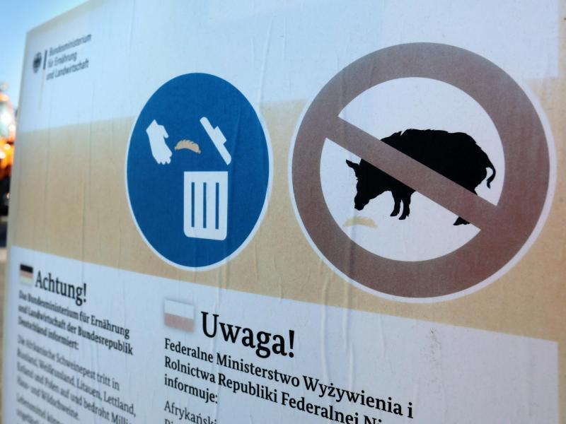 Bild zu Aushänge warnen vor Schweinepest