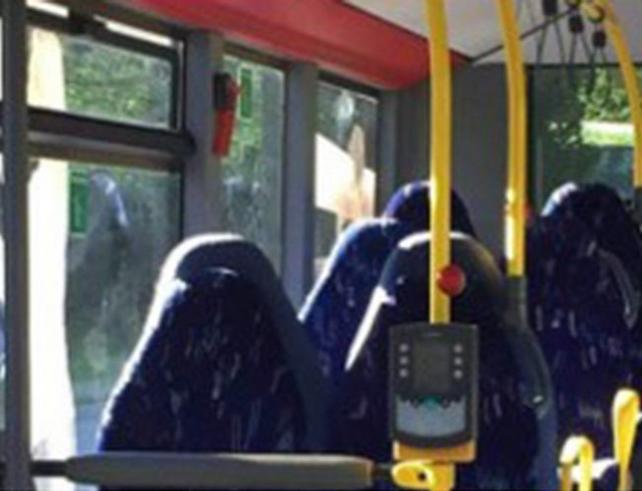 Bild zu Bus, Burka, Norwegen
