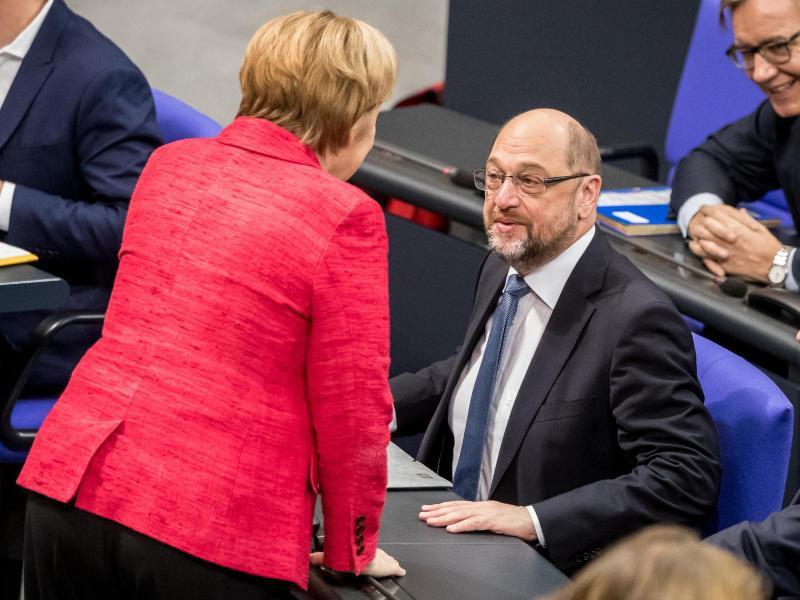 Bild zu Merkel und Schulz