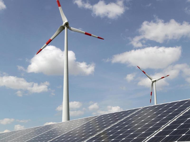 Bild zu Solarzellen