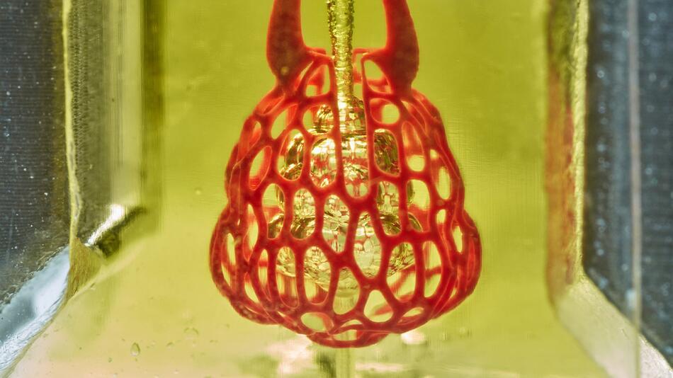 Blutgefäße und Luftwege aus dem 3D-Drucker