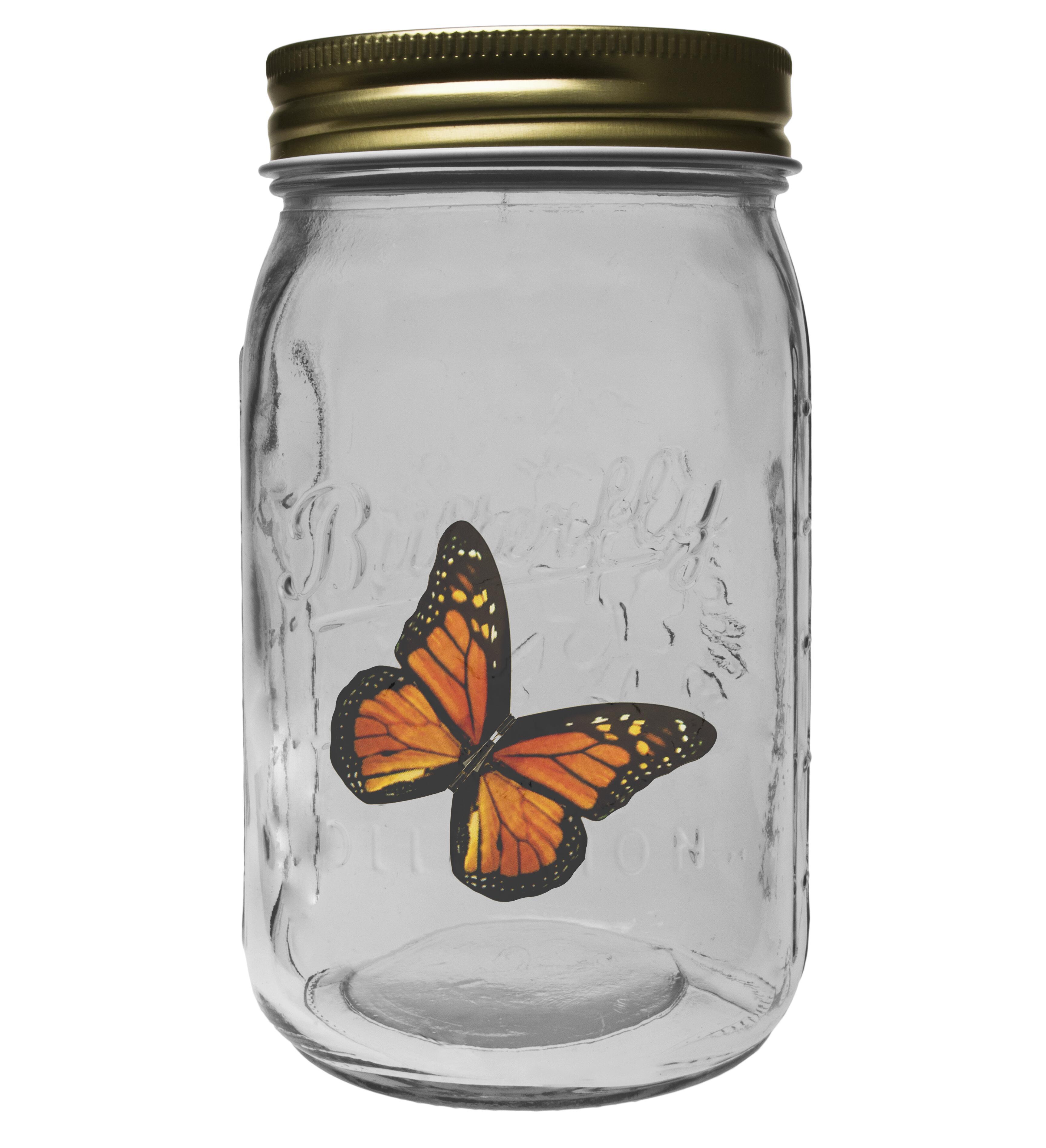 Bild zu Elektronischer Schmetterling