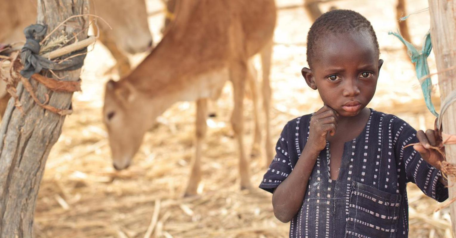 Bild zu United Internet for UNICEF, UNICEF