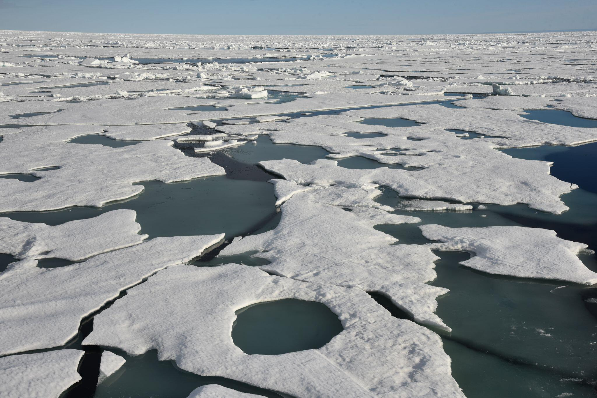 Bild zu Am Nordpol
