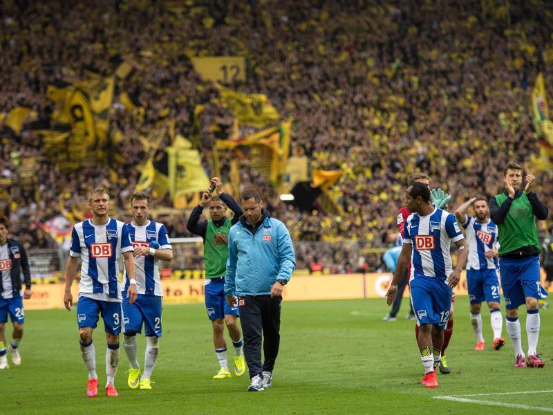 Bild zu Hertha BSC