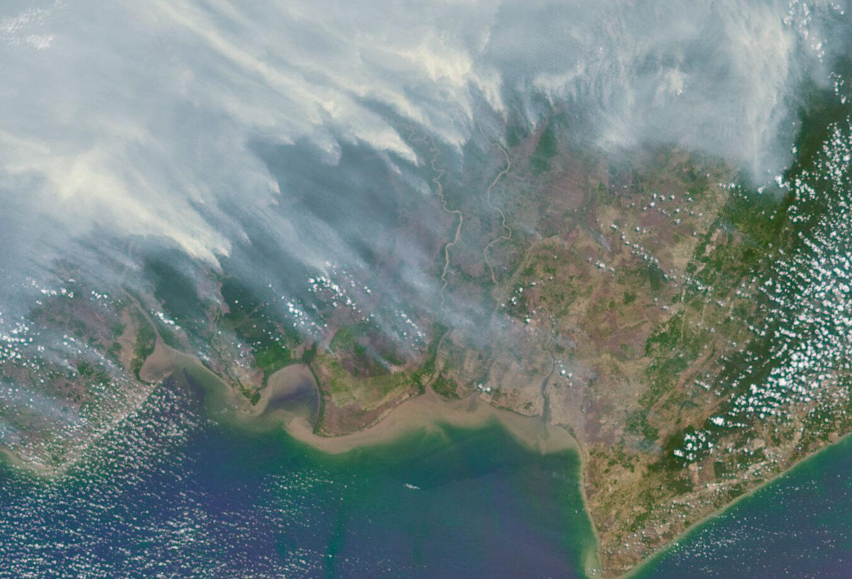 Bild zu Borneo brennt