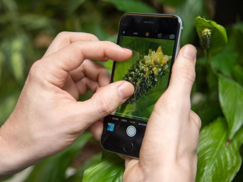 Bild zu Extra Foto-App