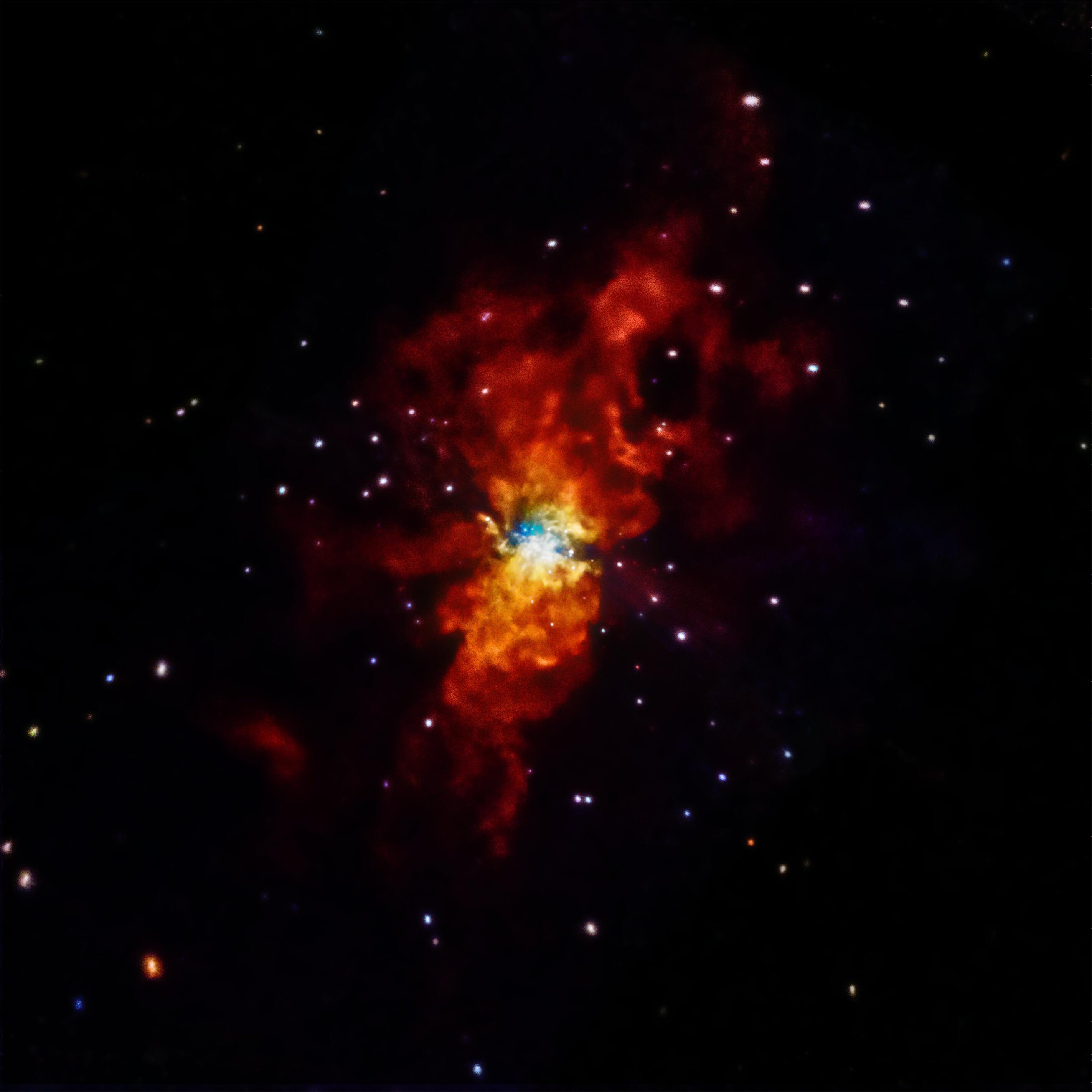 Bild zu Supernova SN 2014J Explodes