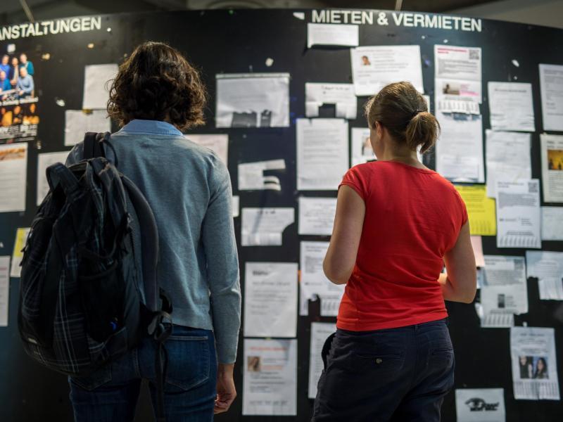 Bild zu Studenten suchen Wohnungen