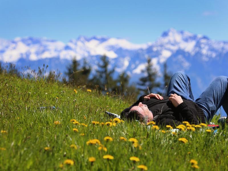 Bild zu Wanderer rasten auf Bergwiese