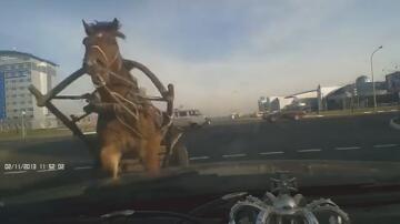 Bild zu Pferdewagen, Kollision, Auto