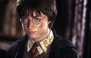 Sieben Fakten über Harry Potter
