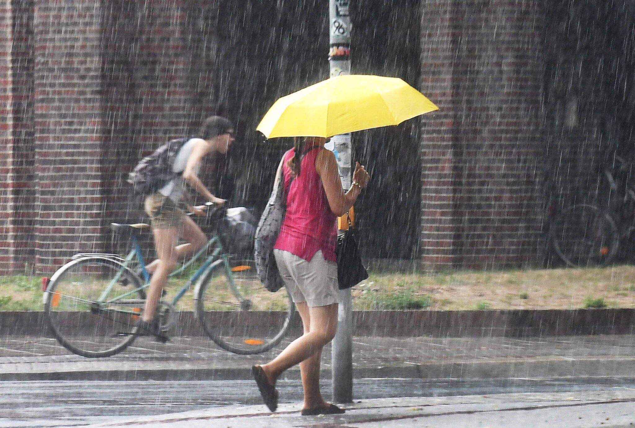 Bild zu Regen in Niedersachsen