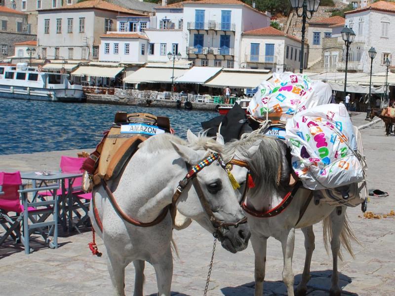 Bild zu Griechische Urlaubsinsel Hydra