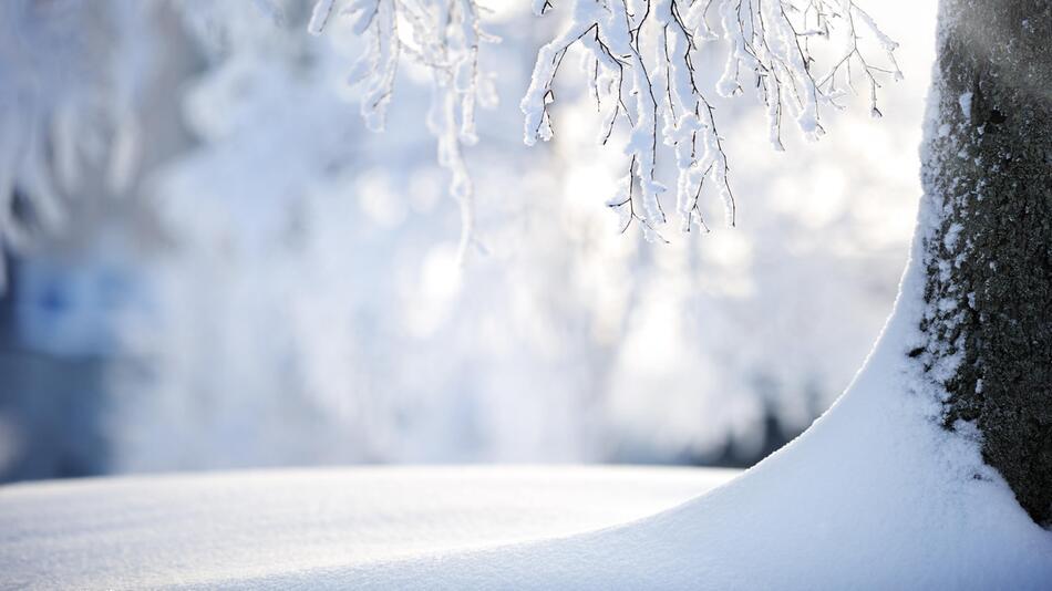 Schneeflocke, Schnee