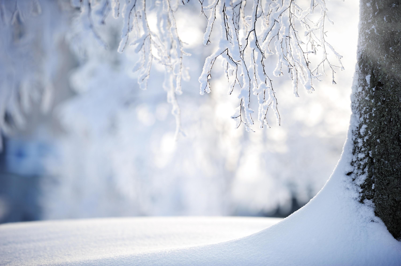 Bild zu Schneeflocke, Schnee