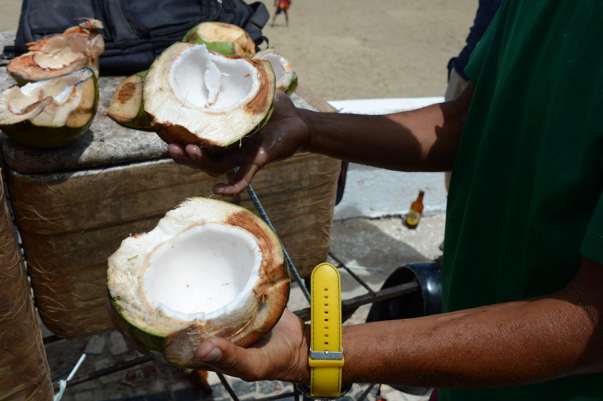 Bild zu Kokosnuss