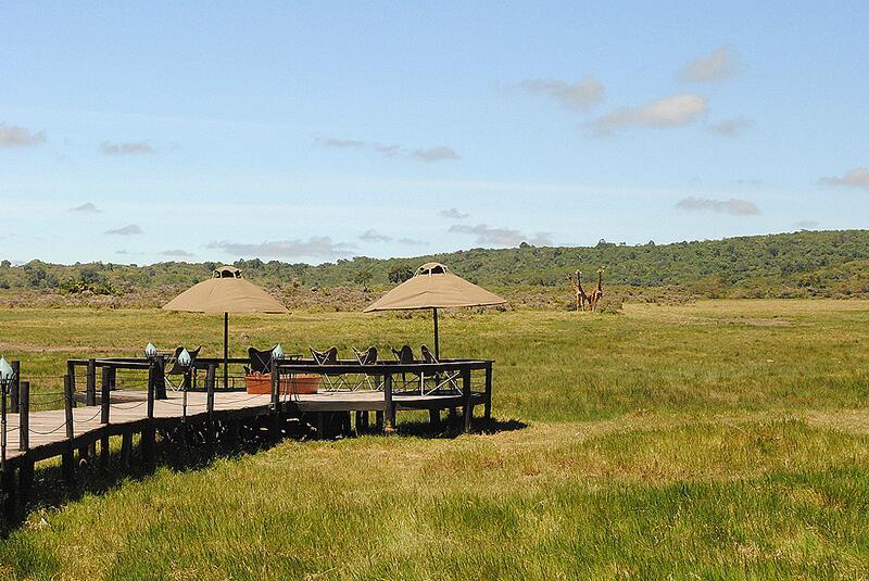 Bild zu Hatari: Hatari Lodge, Tansania
