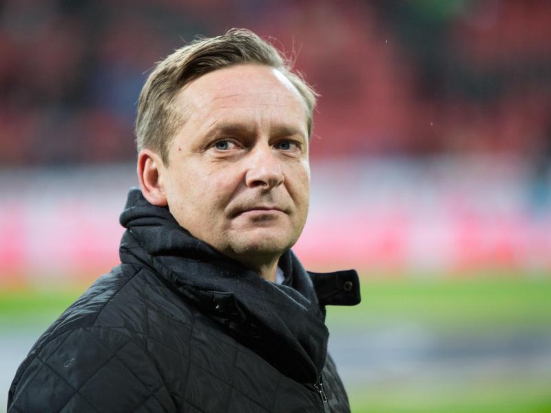 Bild zu Schalke-Manager