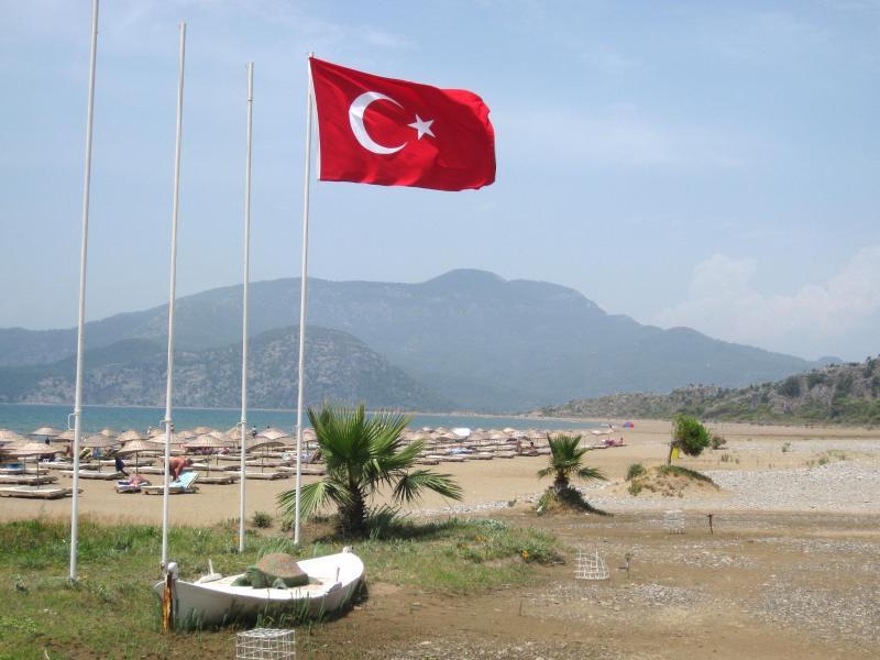 Bild zu Türkei-Flagge