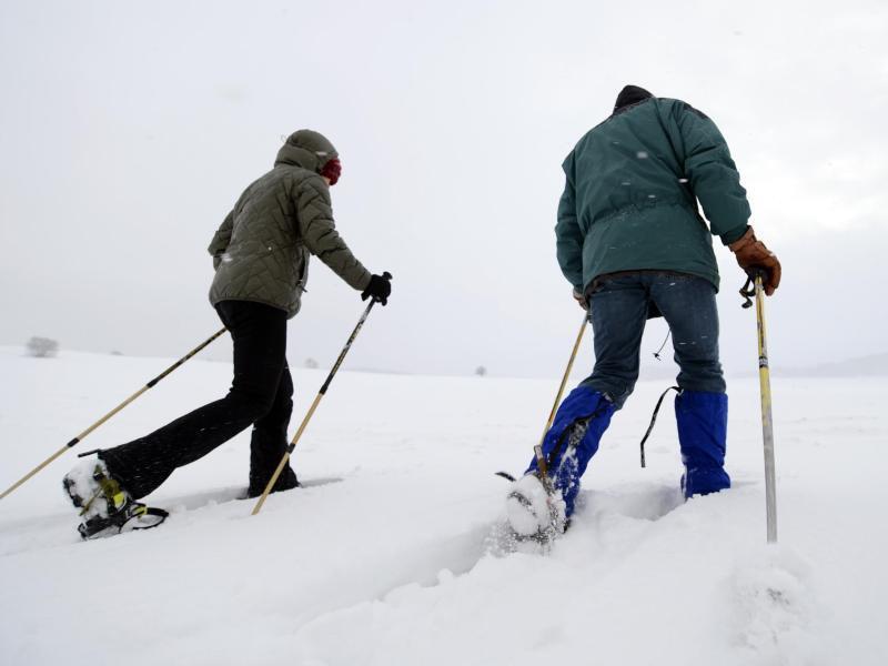 Bild zu Schneeschuhläufer