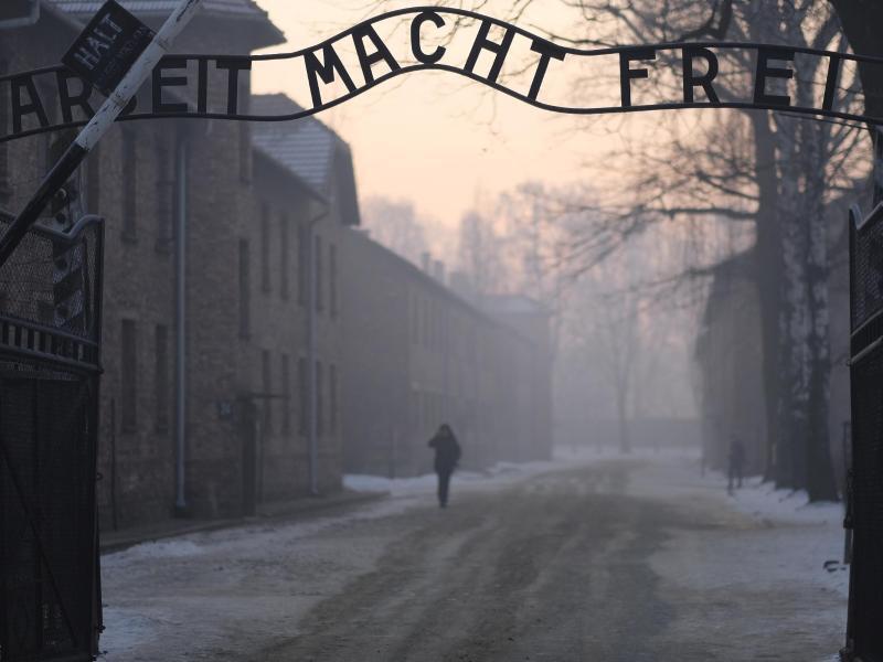 Bild zu Auschwitz