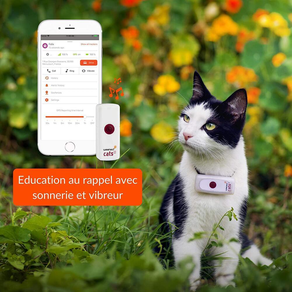 Haustiere, gadgets, nützliche produkte, tracker, halsband, futternapf, pfotenreiniger, smart