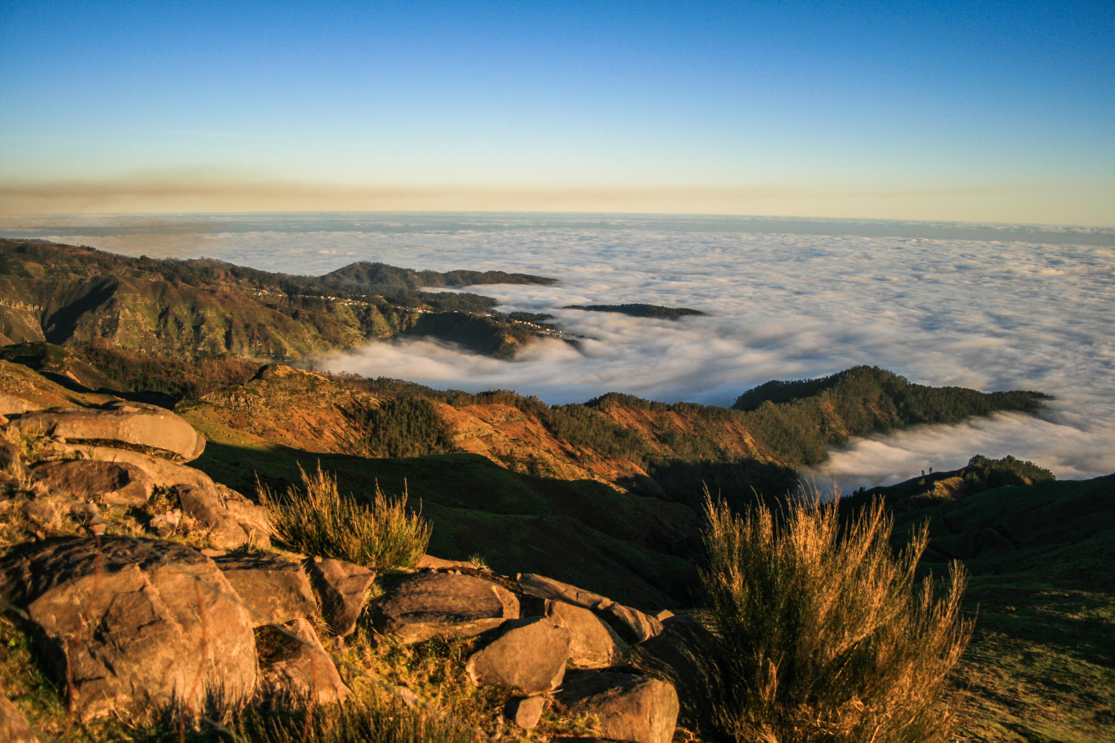 Bild zu Madeira