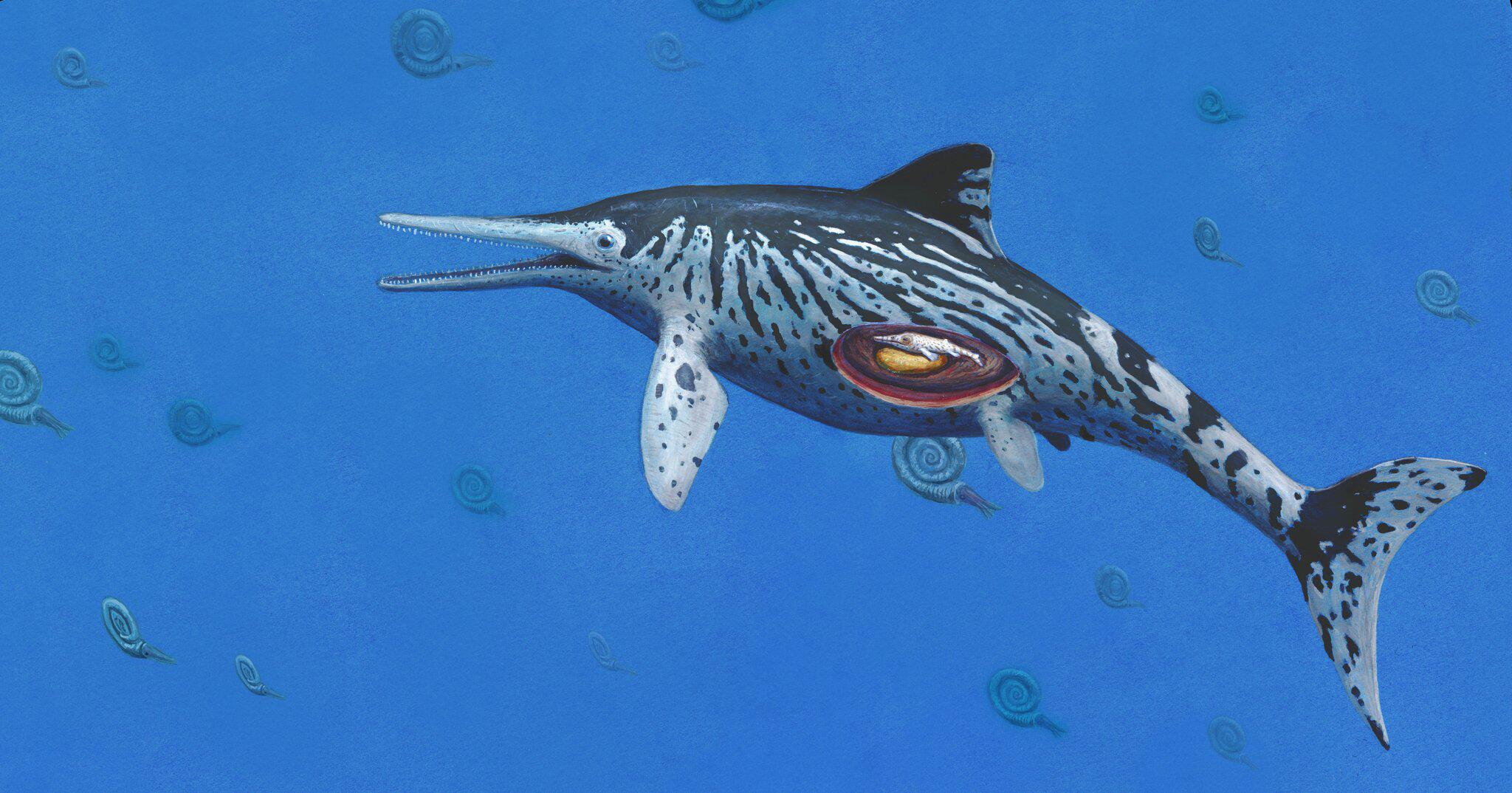 Bild zu Fischsaurier