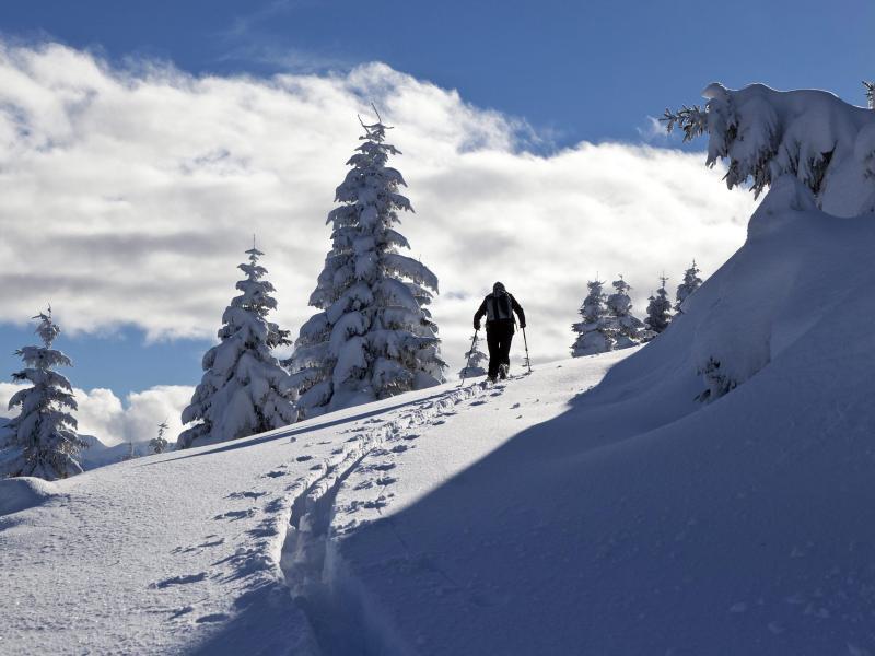 Bild zu Skitour in der Schweiz