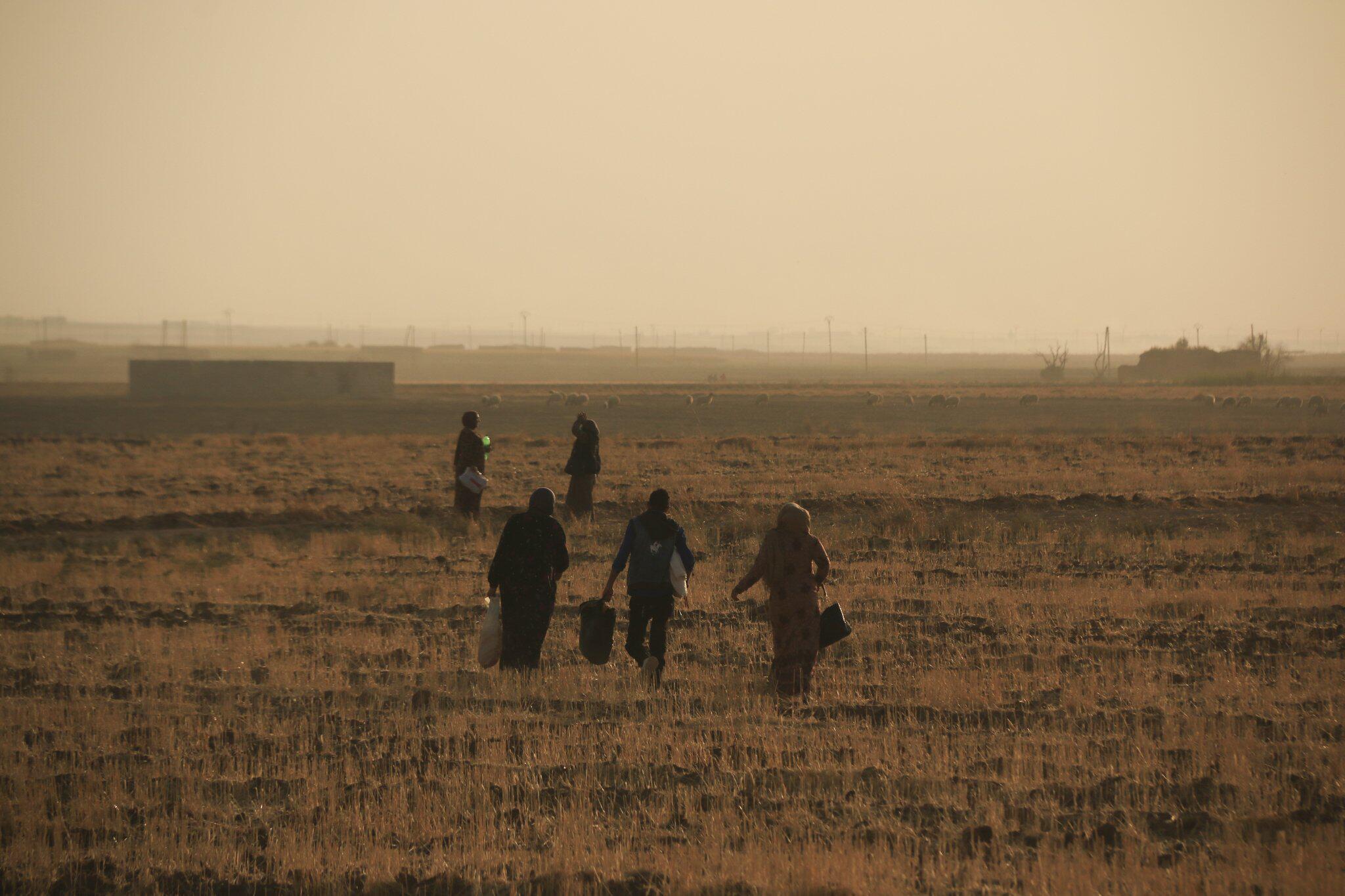 Bild zu Militäroffensive der Türkei in Nordsyrien