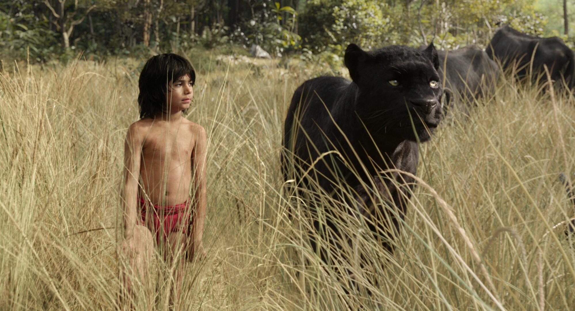 Bild zu JungleBookClip