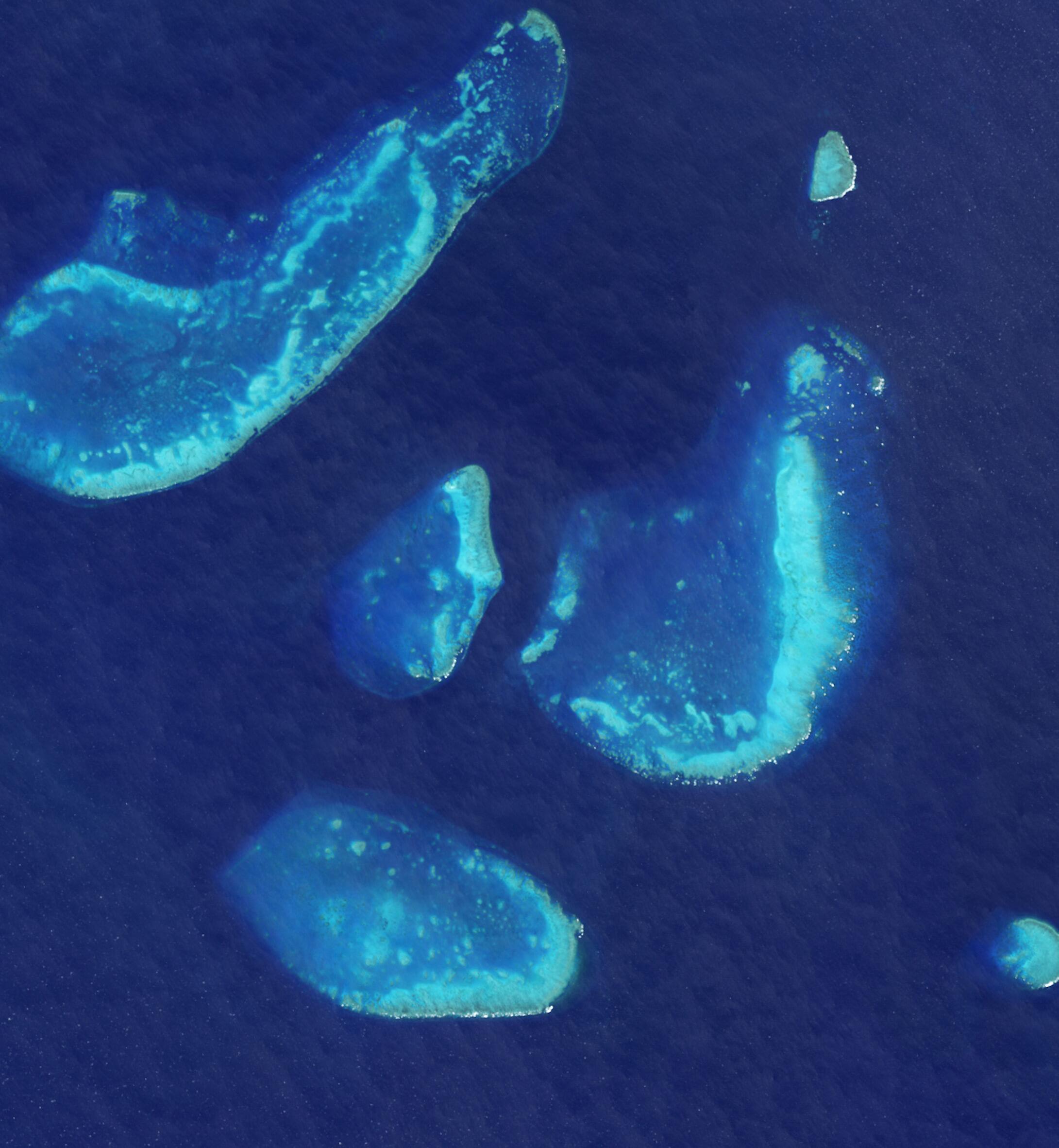 Bild zu Trunk Reef