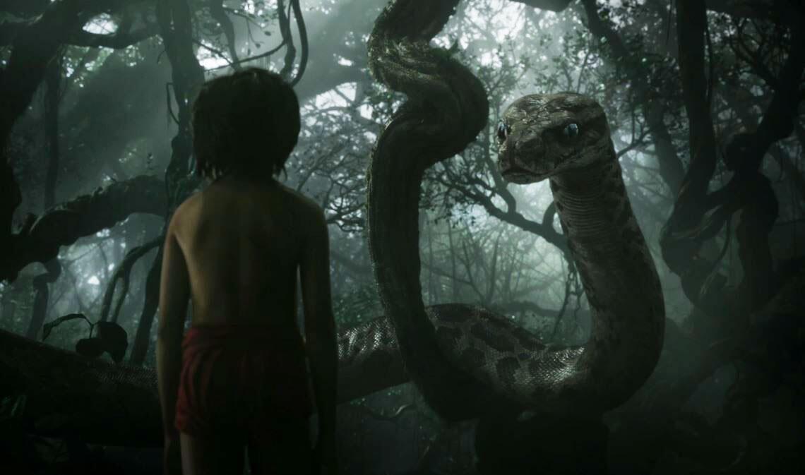 Bild zu JungleBook
