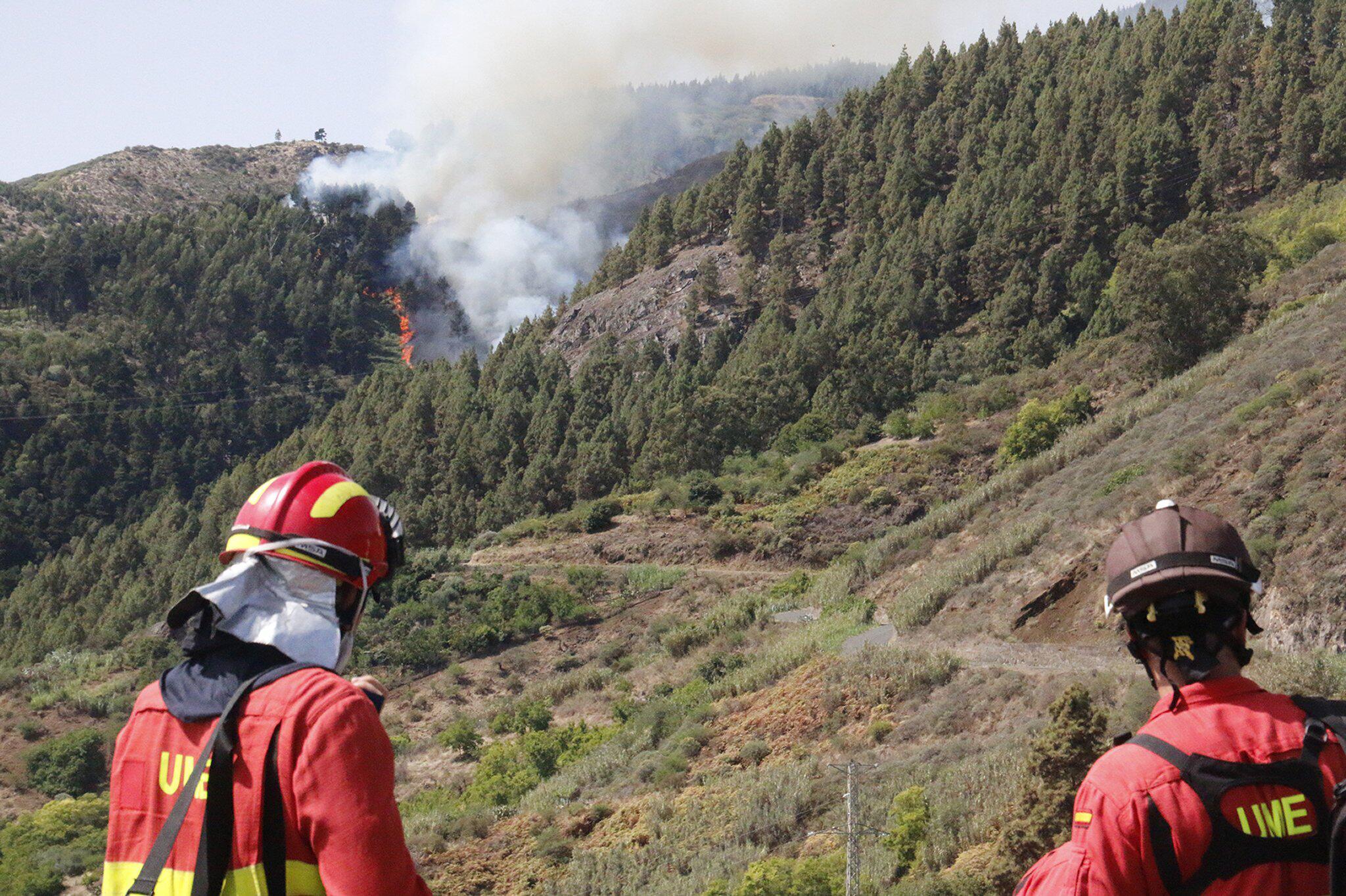 Bild zu Waldbrand auf Gran Canaria