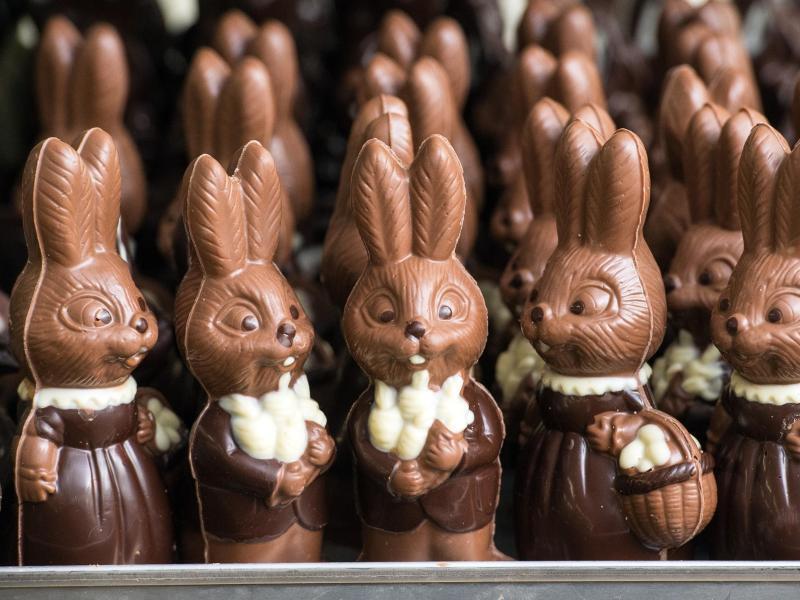 Bild zu Ostern - Schokoladen-Osterhasen