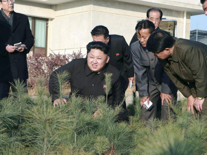 Bild zu Nordkoreanische Führung